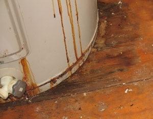Hardwood Floor Water Damage wood floor water damage drying regent restoration Water Damage Wood Floor